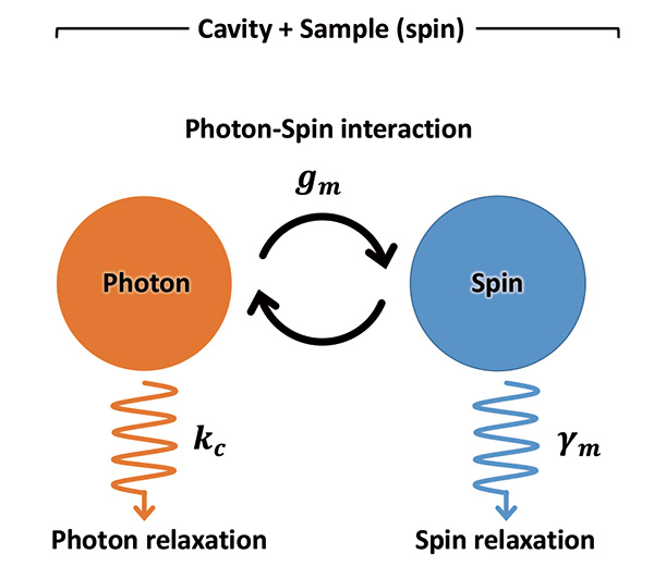 Fig.1 Energy flow in spin–cavity system.