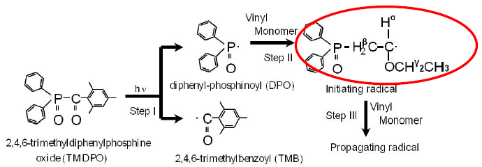 Fig.1 Radical Polymerization Scheme Initiated by Photochemical Reaction