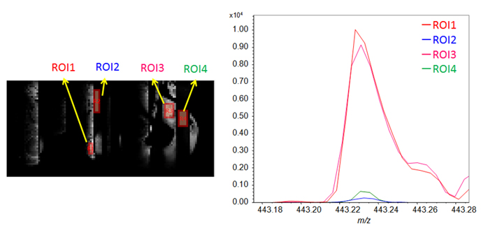 Figure 4. The ROI mass spectra from the conductive parts (ROI1 and -3) and non-conductive parts (ROI2 and -4) on model substrate without gold deposition.