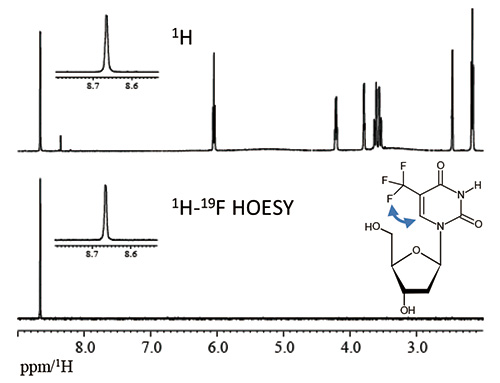 Fig. 4: 1D 1H-19F HOESY spectrum