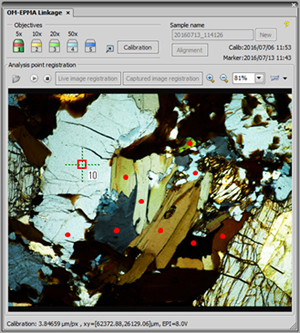 Polarized light OM image: Mag. x50