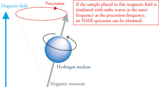 principle of nmr spectroscopy ppt